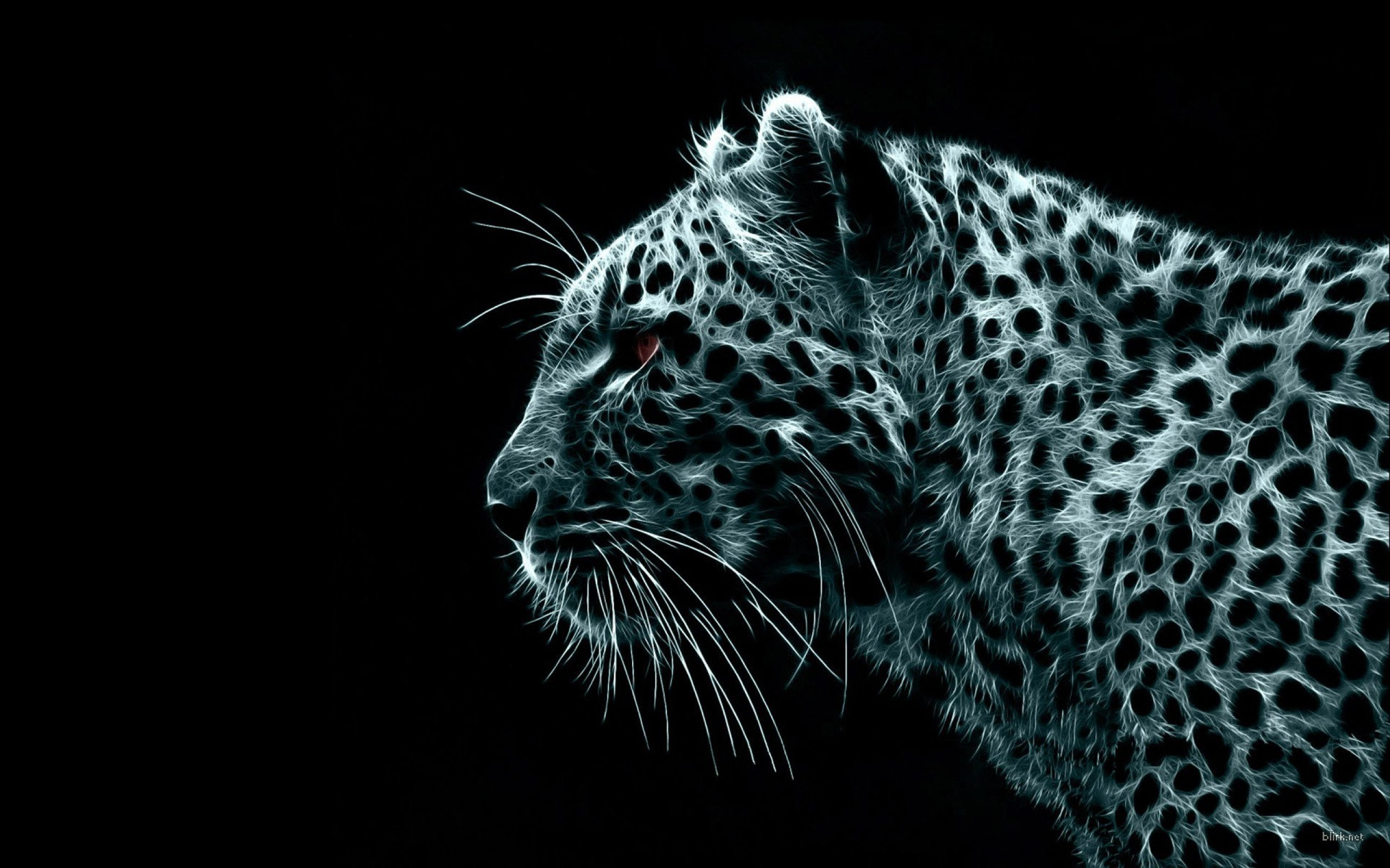 Animal HD Wallpaper