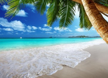 Beautiful Beach Wallpaper