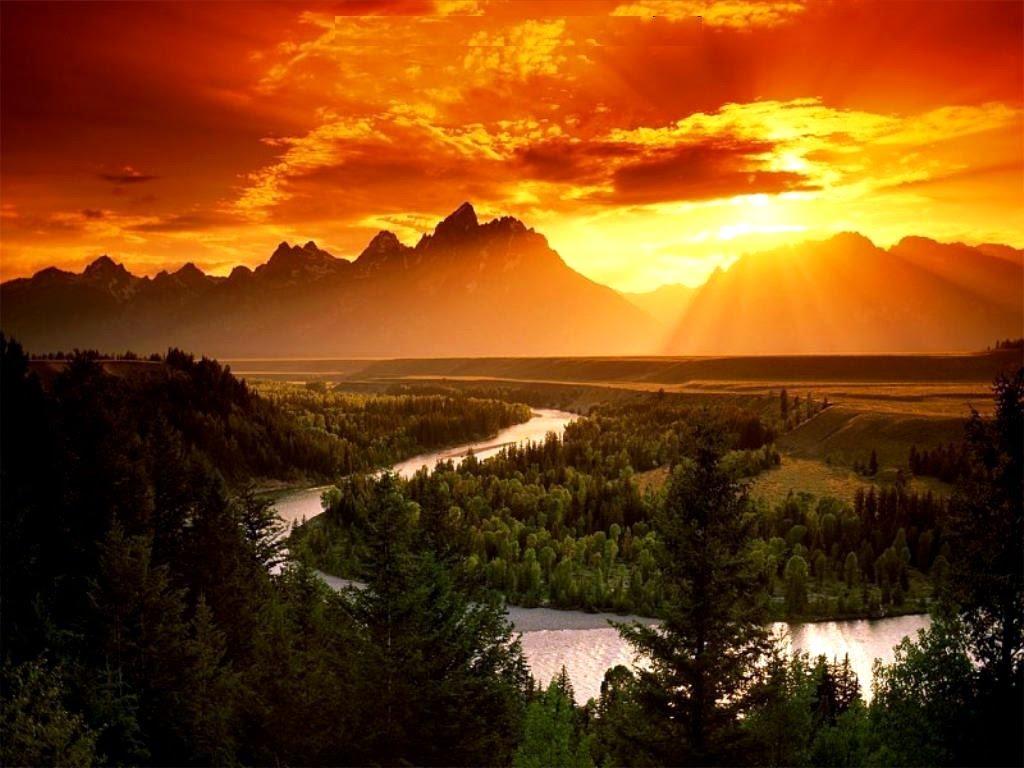 Best Beautiful Nature