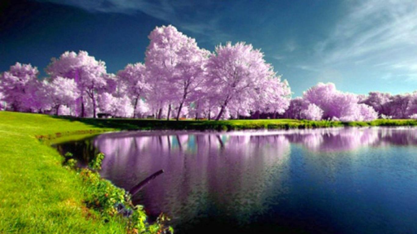 Download Landscape Spring Wallpaper 1366x768