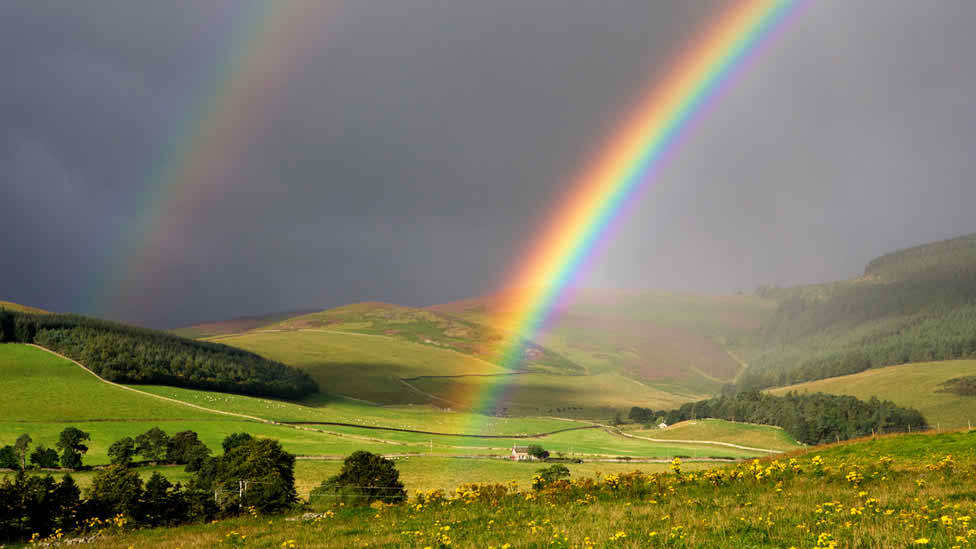 Nice Rainbow Photo