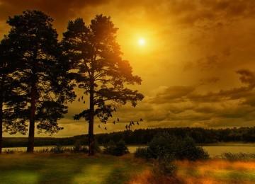 Stunning Beautiful Nature