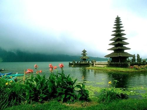 Stunning Natural Scene