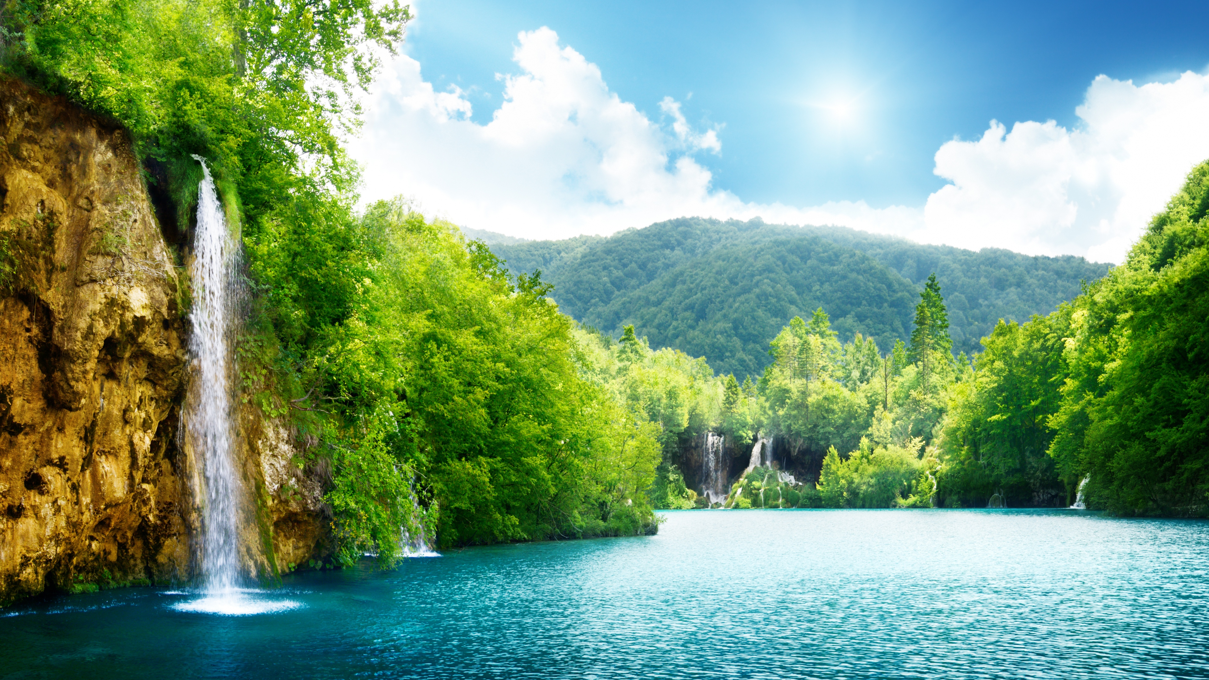 Summer Lake Nature