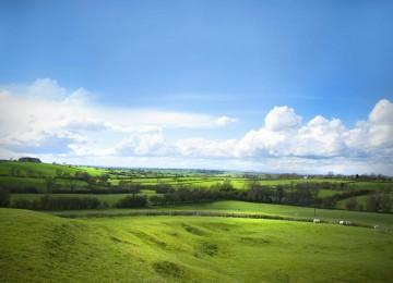 Nice Landscape Scene