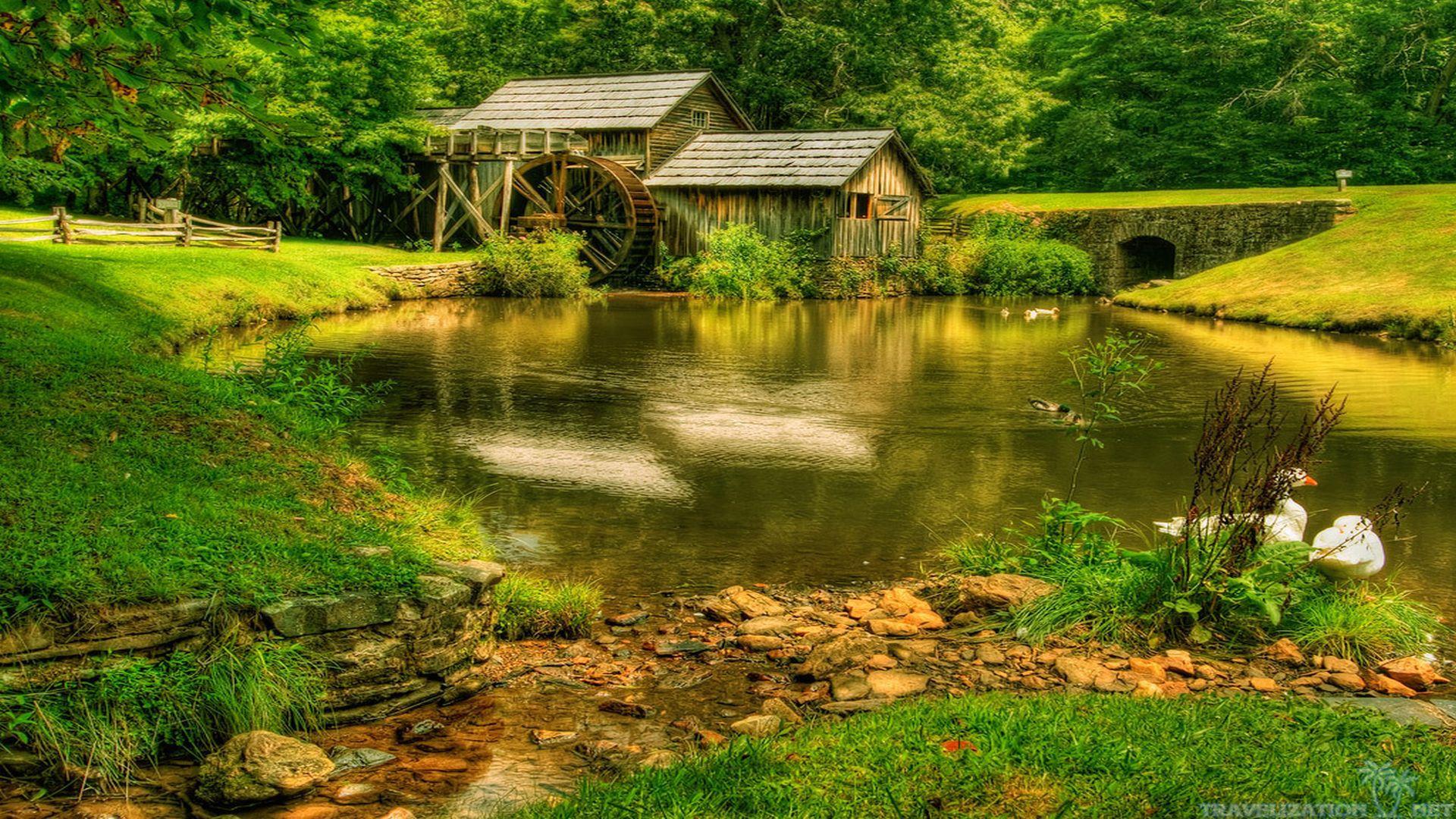 Nice Nature Scene