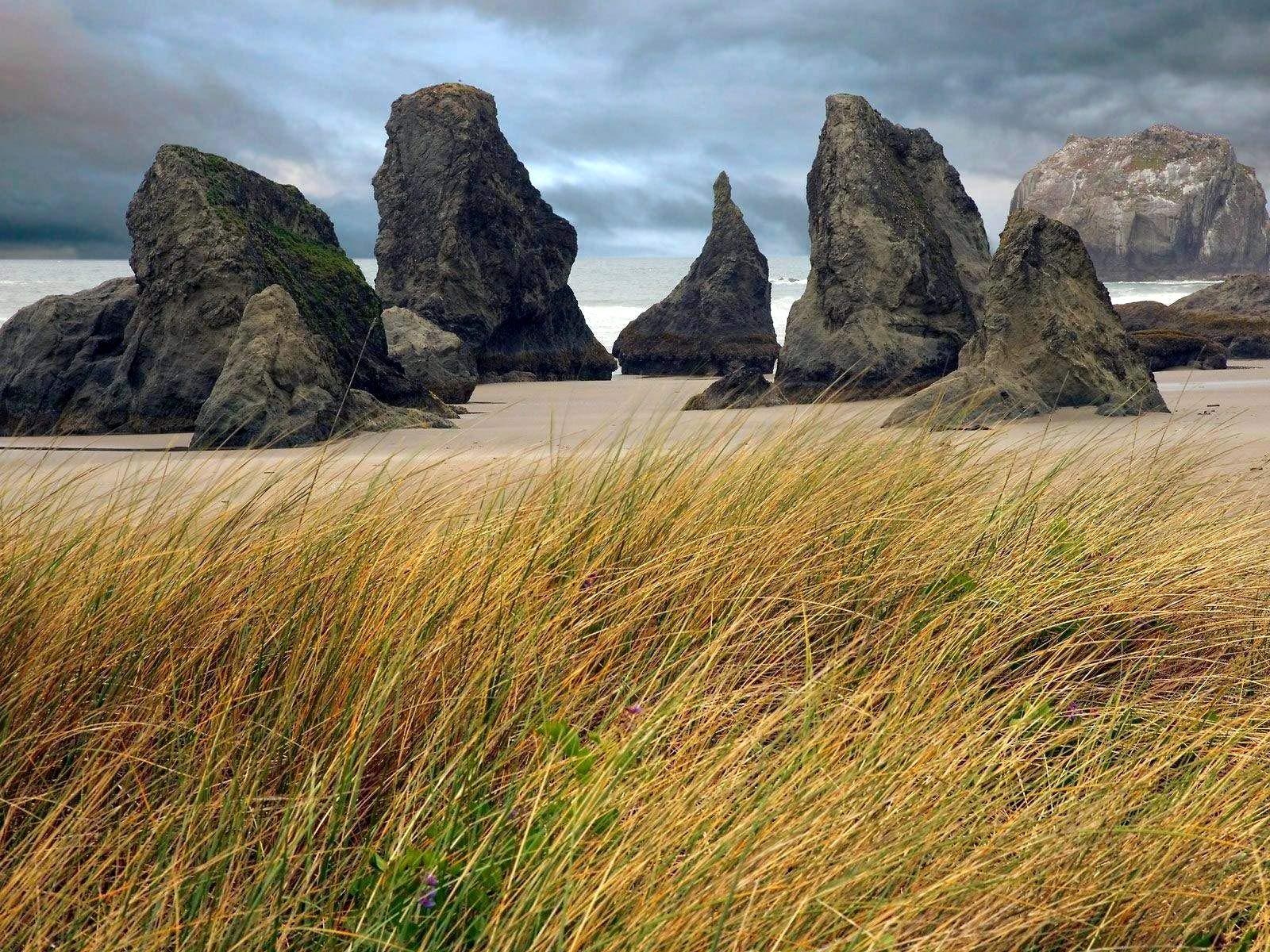 Photography Landscape Scene