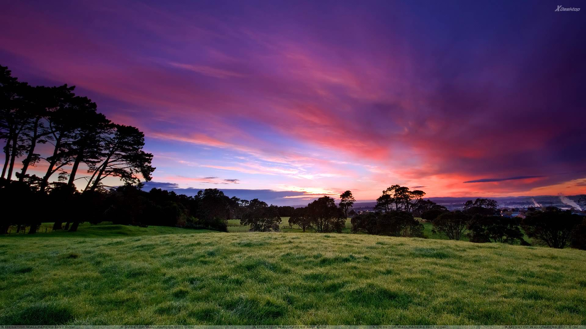 Stunning Landscape Scene
