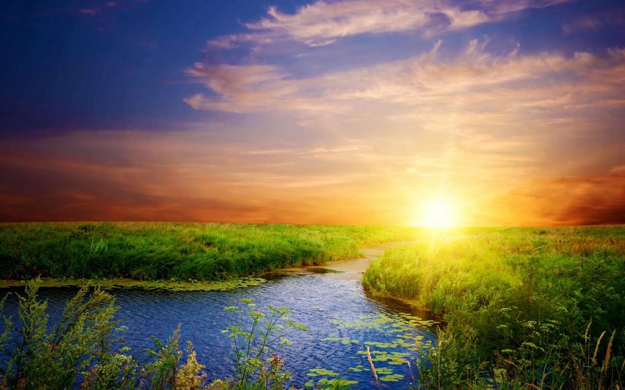 Sunshine Backgrounds 2560x1600