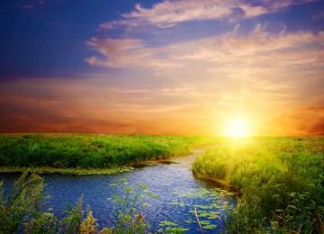 Stunning Sunshine Photo