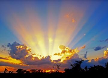 Widescreen Sunshine Photo