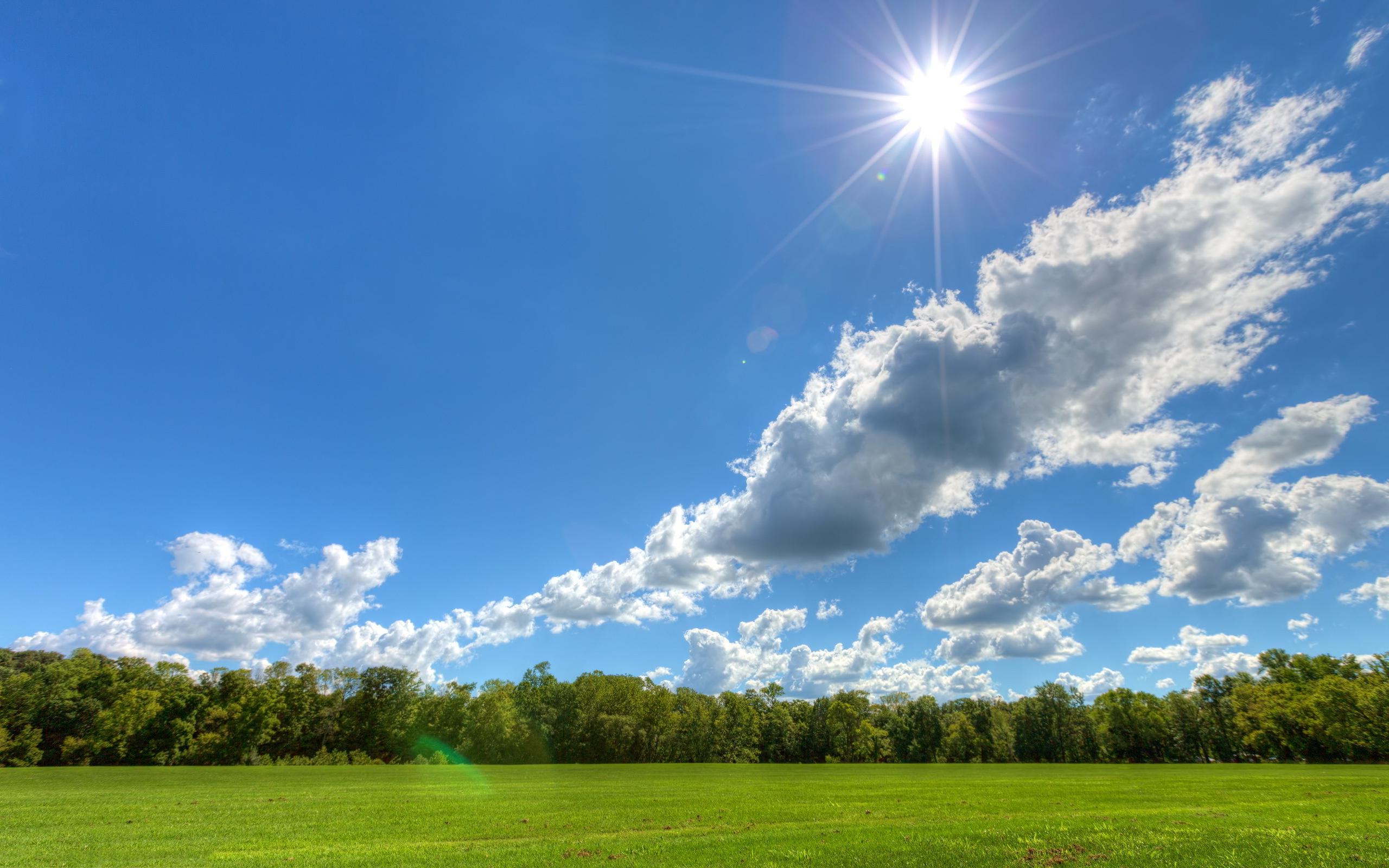 Landscape Sunny Day