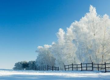 Widescreen Snow Image