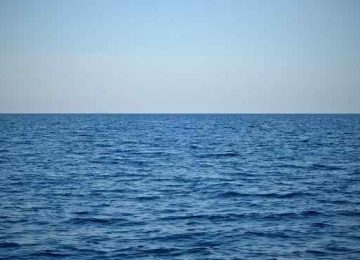 Fantastic Sea Water