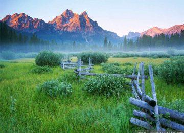 Widescreen Mountain Meadow