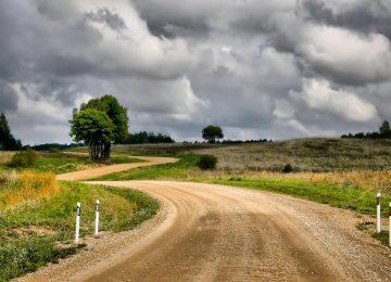 Beautiful Dirt Road