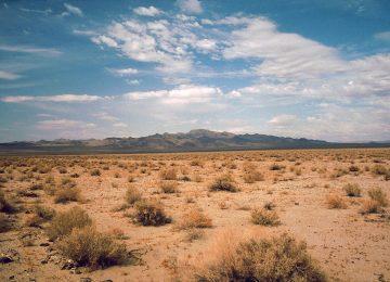 Cool Desert