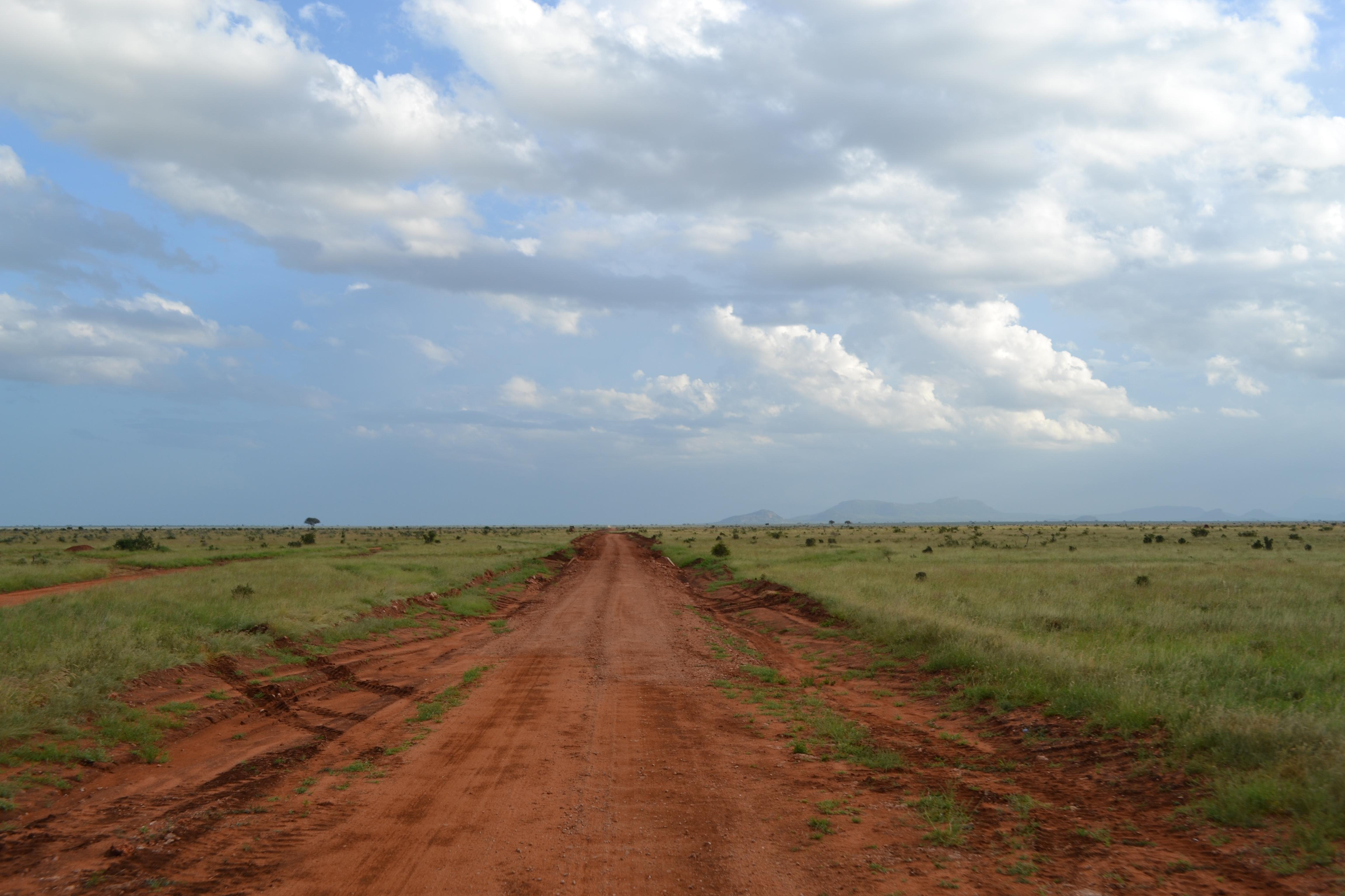 Natural Dirt Road