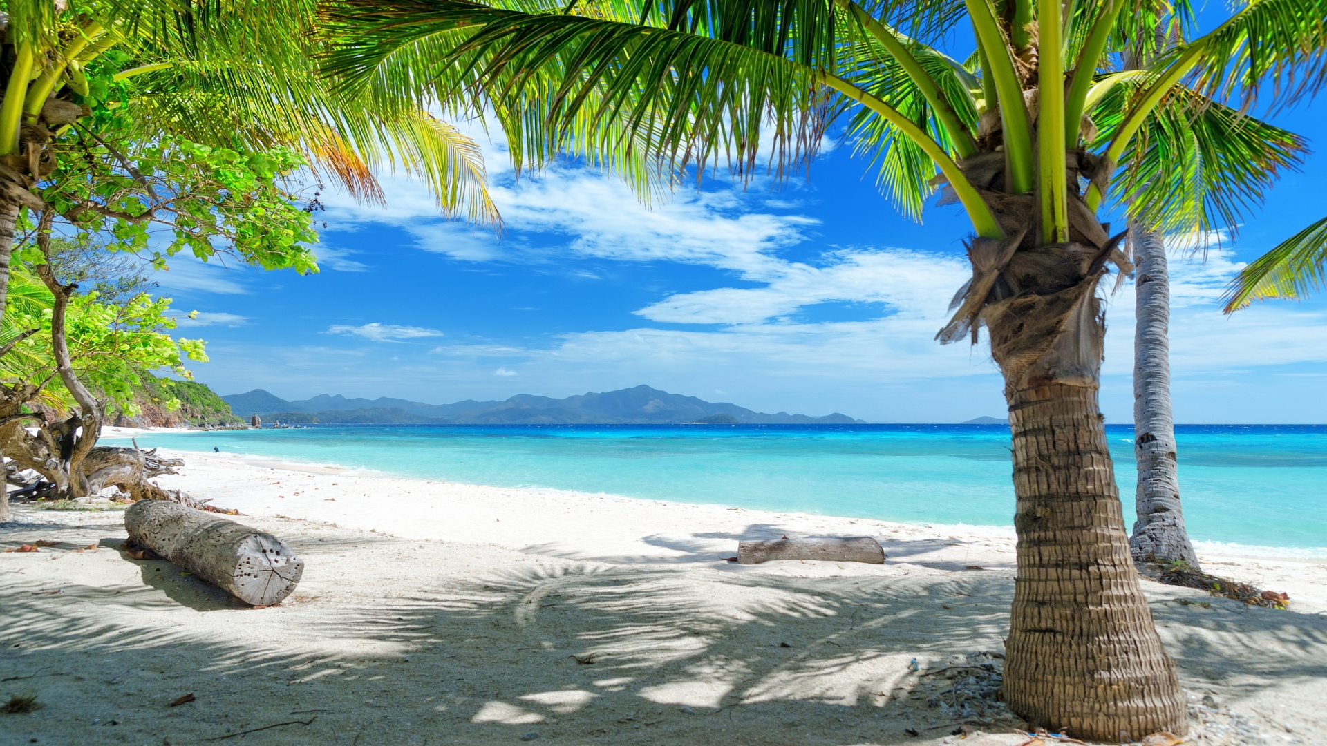 Natural Tropical