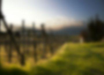 Top Blur Image