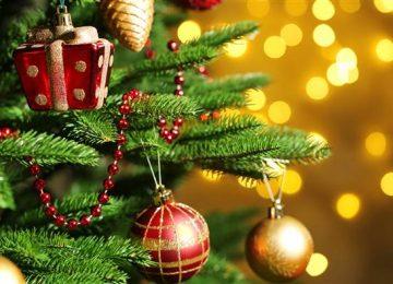 Christmas Tree Today