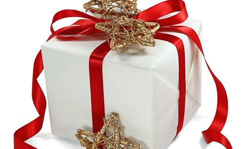 Christmas New Year Gift