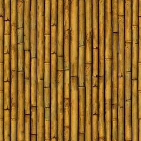 Bamboo Texture Seamless