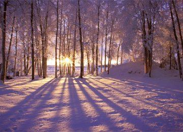Free Winter Sunrise