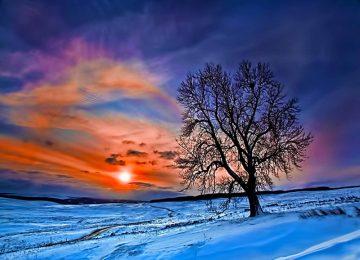 Natural Winter Sunrise