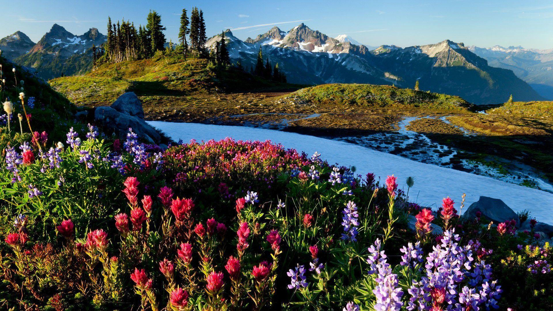 Natural Spring Mountains