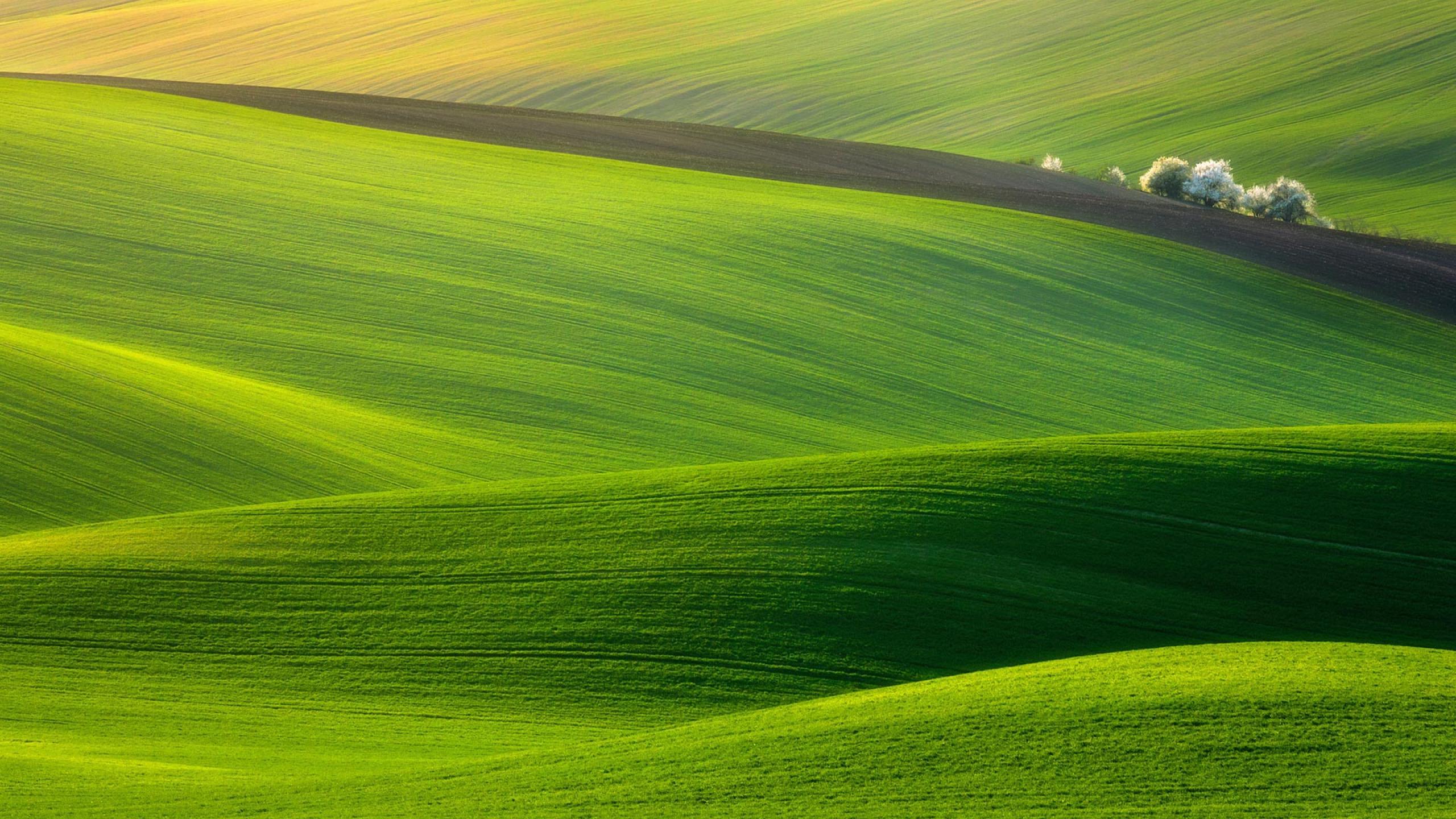 Widescreen Hills Wallpaper