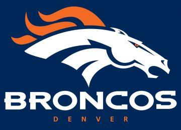 3D Denver Bronco