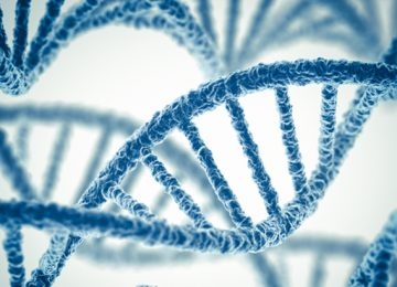 Digital Genetic Image