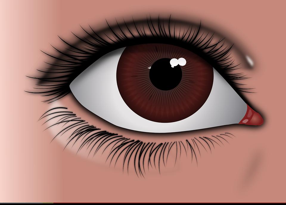 Free Eye Image