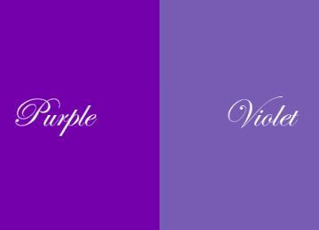 Top Violet
