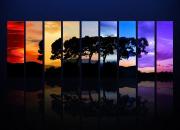 Tree Spectrum HD