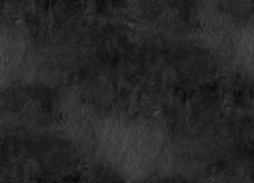 Black Dark Texture