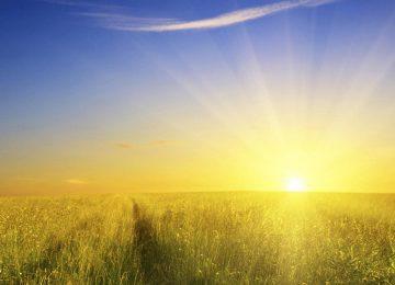 Landscape Sunshine