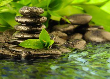 Wonderful Zen Wallpaper