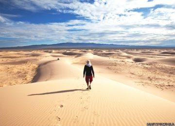 Top Gobi Desert
