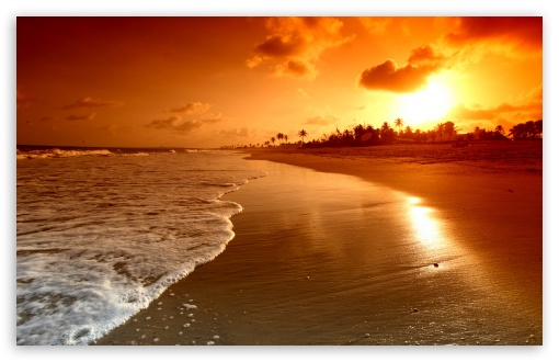 Beach Sunrise Wallpaper