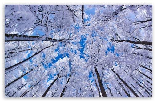 Super Winter Wallpaper