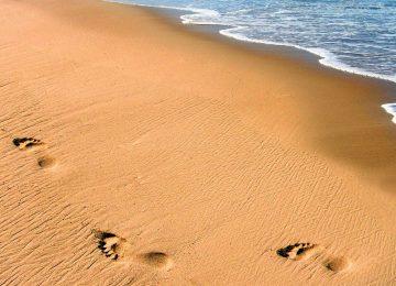 Nice Beach Sand