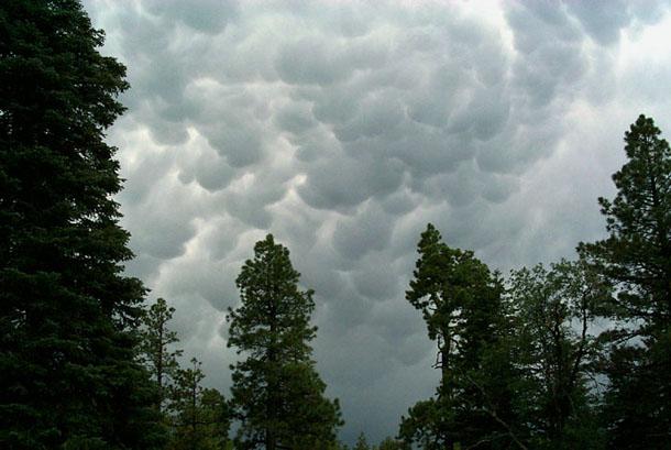 Free Cumulus Clouds