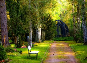 Beautiful garden Nature Image