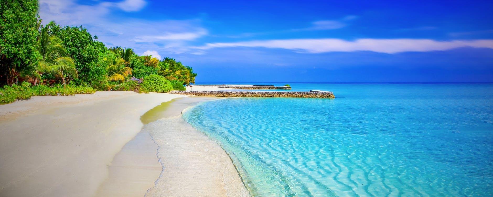 Nice sea Nature Image