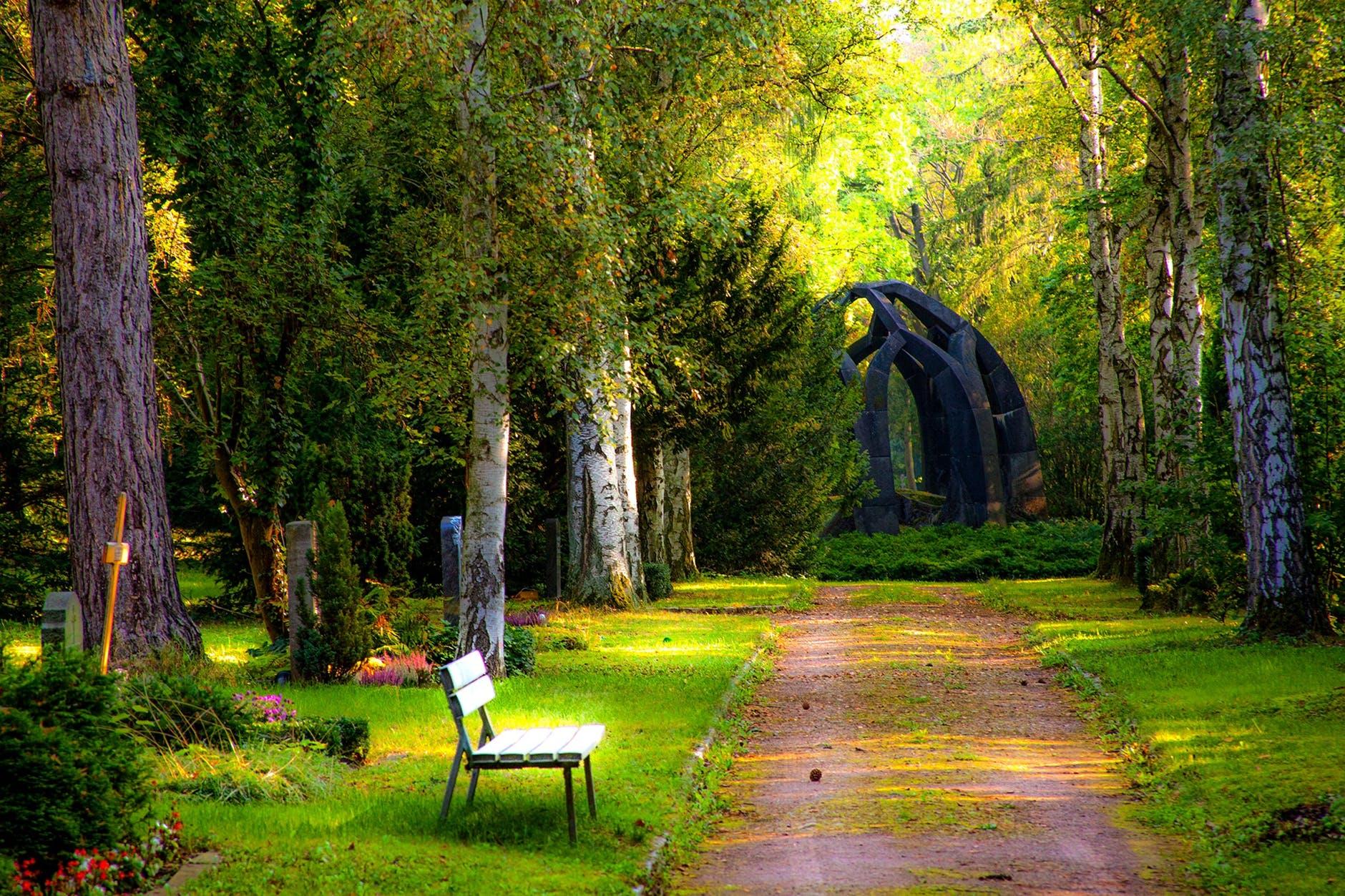 Widescreen Garden
