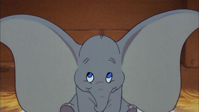 Best Dumbo