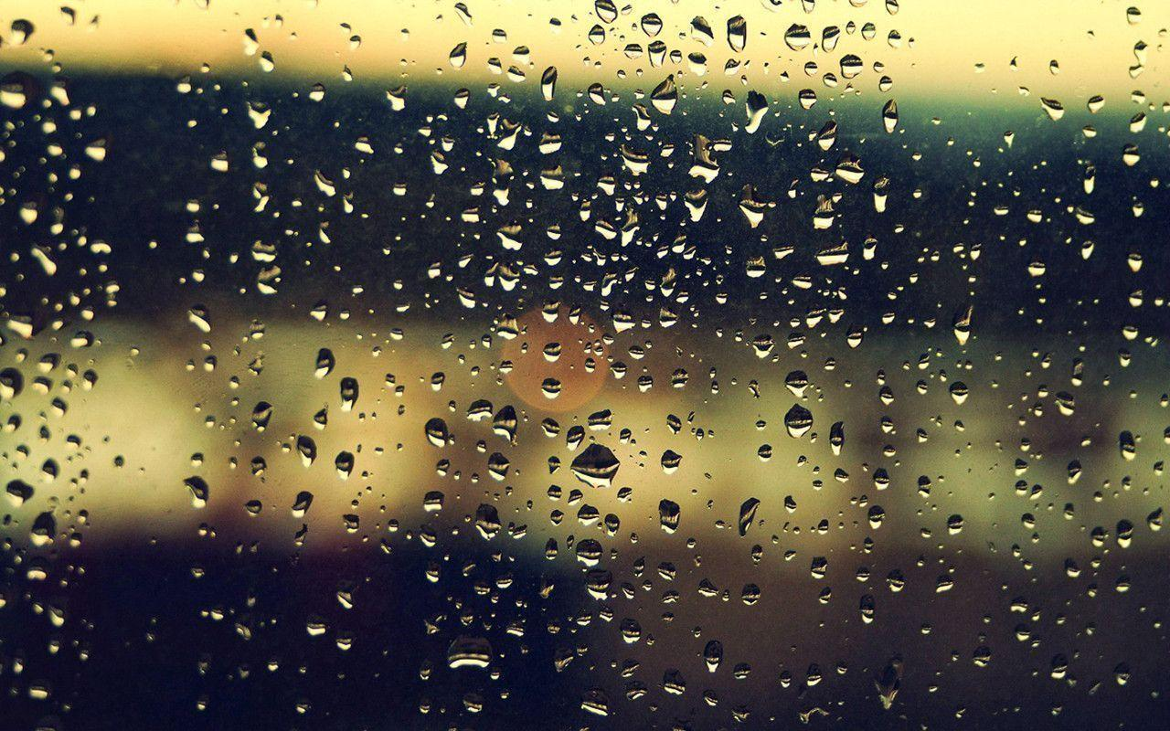 Fantastic Rain Drops
