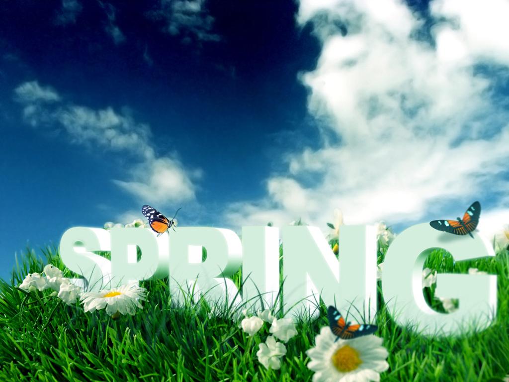 Nice Spring Image